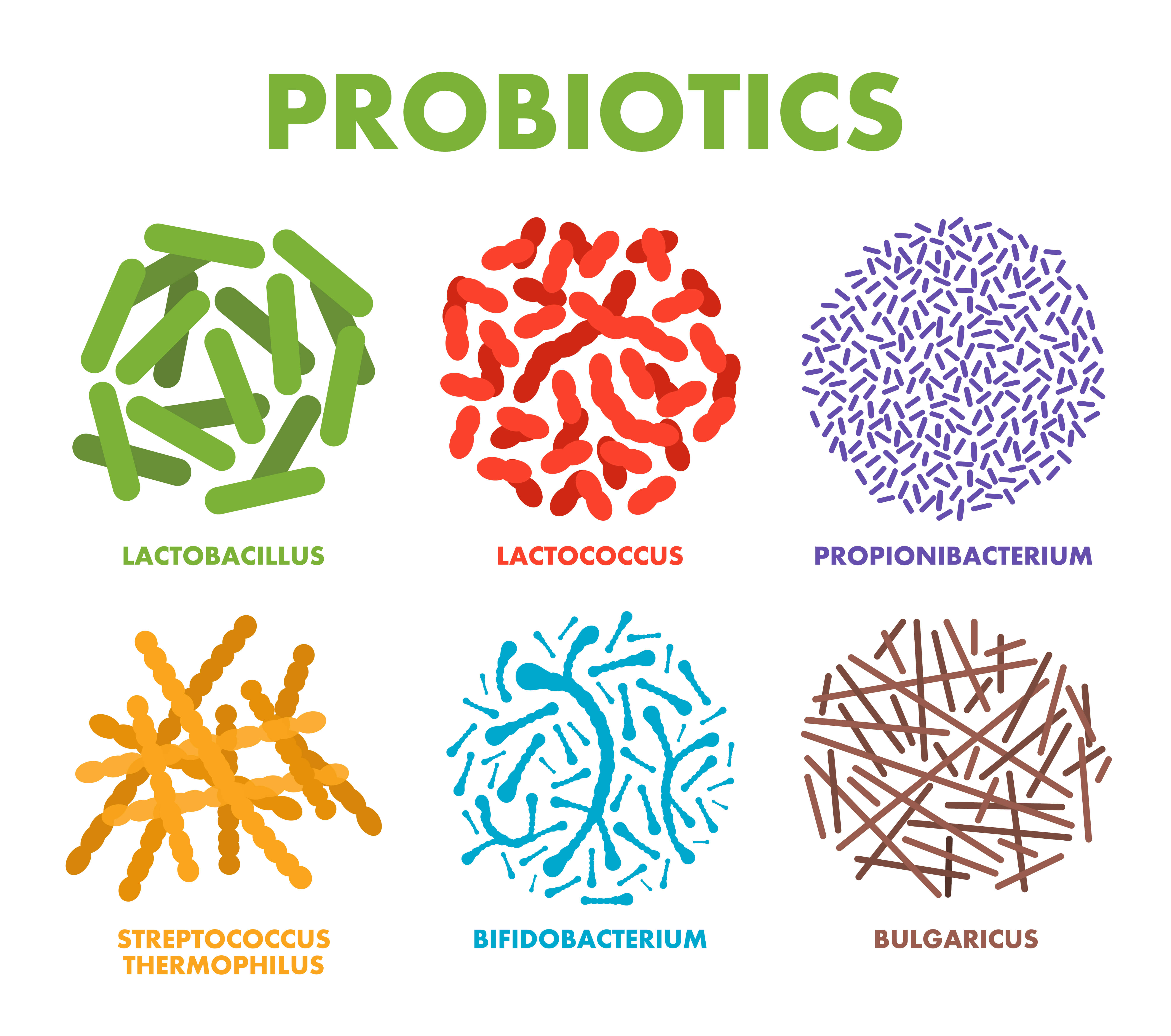 bacteria and bad bacteria